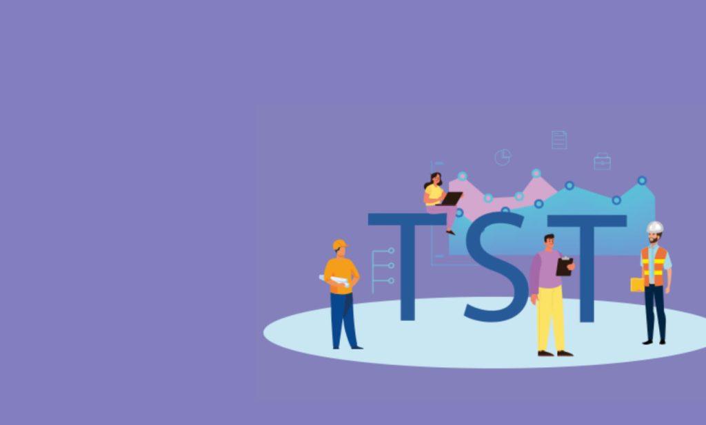 Os papéis do TST na implantação do GRO