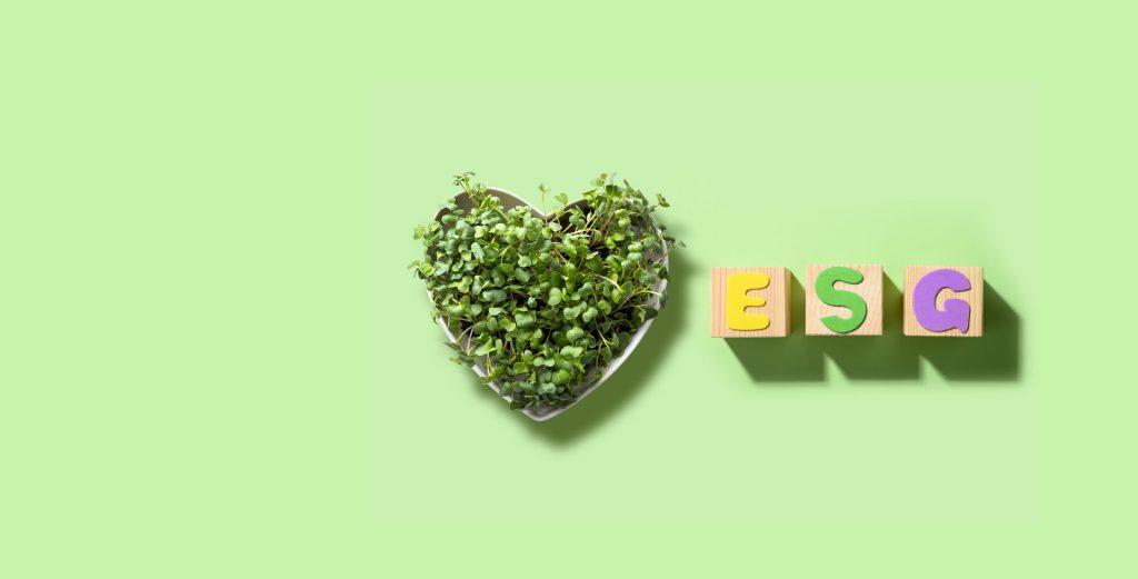 O que é investimento ESG?